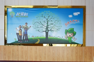 君利木业办公室摆放的能量树宣传
