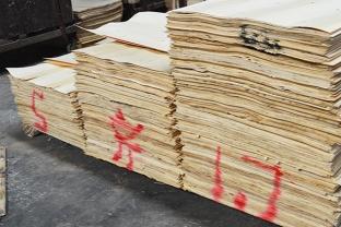 君利木业厂房内做标记的木皮原料