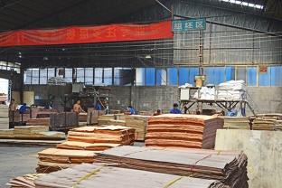 君利木业厂房组坯区的全景图