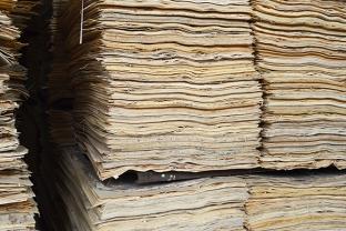 君利木业胶合板原料细节图