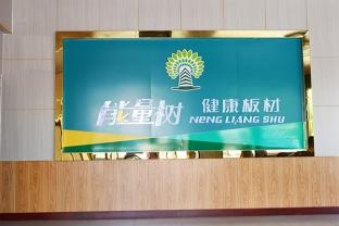 君利木业能量书健康板材宣传海报