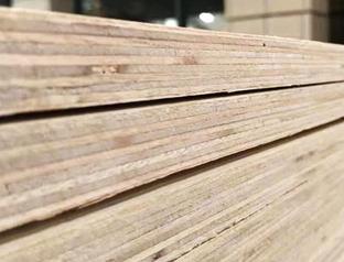 多层橡木指接皮生态板